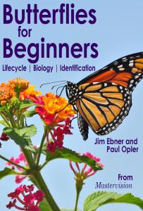 Poster-ButterfliesforBeginners